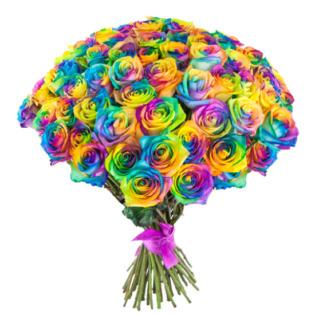 Розы Эквадор радужные
