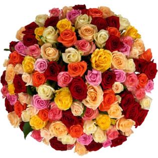 Розы Россия Микс 101