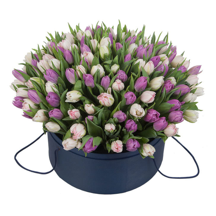 Акция! Тюльпаны в коробке 101 шт.