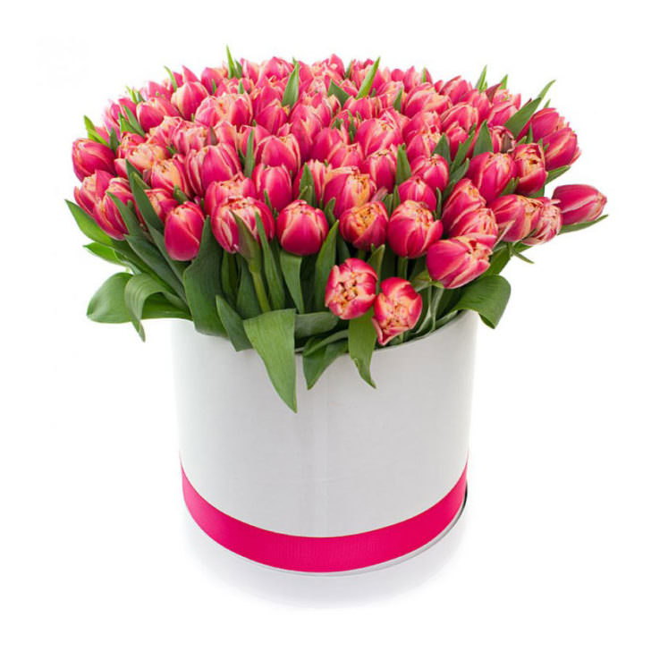 Акция! Тюльпаны в коробке 51 шт.