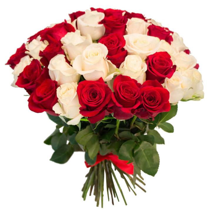 Розы Кения Микс 1