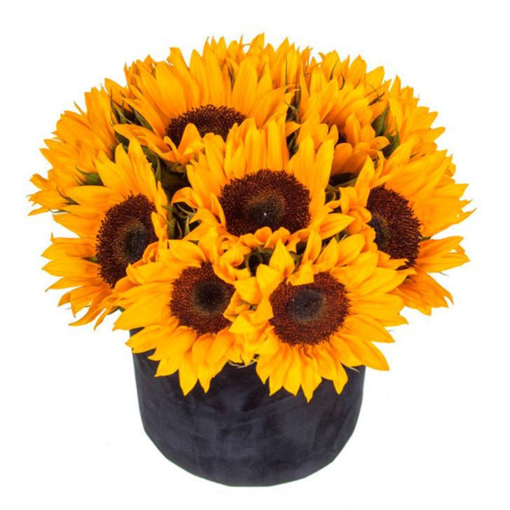 """Цветы в коробке """"Яркий день"""""""